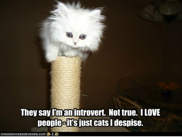introverts and network marketing